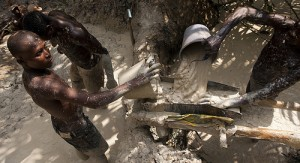 three-illegal-miners-killed