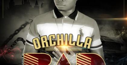 Orchilla Art