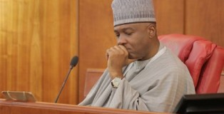Senate President; Bukola Saraki (Photo; Vanguard)